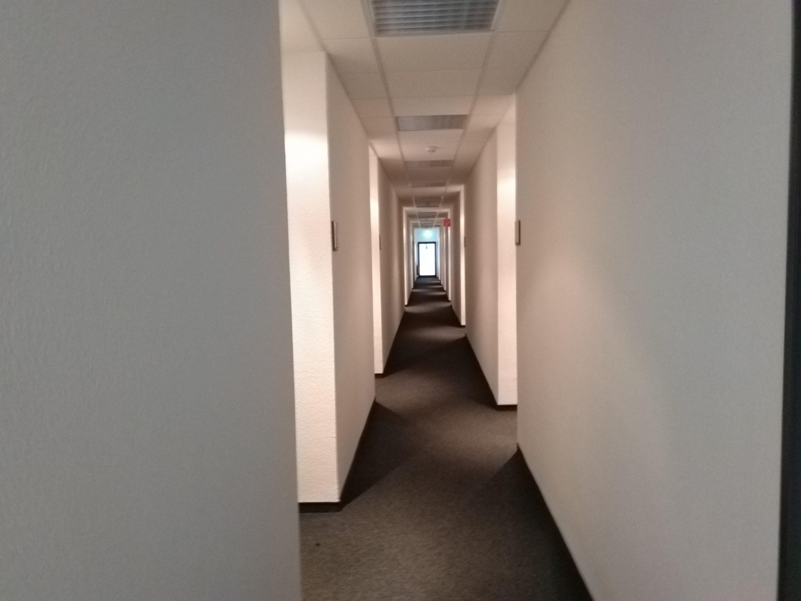Büroflur mit Teppich - Wischen ist Macht JAMES CLEAN GMBH Ihr Servicepartner seit 1996 aus Mönchengladbach